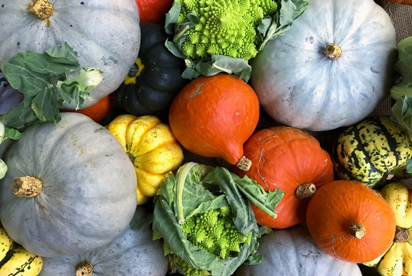 multi-colored gourds